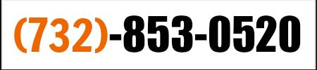 31e9Y7Ob5wL._SY300_QL70_